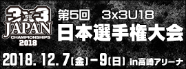 081.3×3