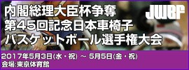 10.第45回記念日本車椅子選手権大会
